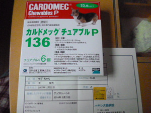 P1060749