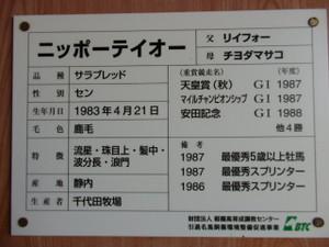 P4190029